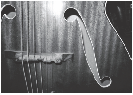 Close up of string instrument
