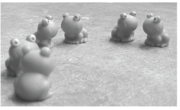 Six toy frogs